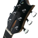 Carved body custom guitar, Ebony headstock