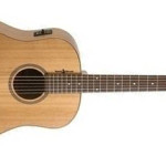 Seagull Heart of Wild Cherry acoustic electric guitar on sale in Vancouver at Basone Guitar Shop