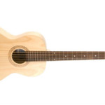 Seagull parlor guitar on sale in Vancouver at Basone Guitar Shop