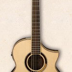 Ibanez Multi Wood Acoustic Guitar AEW51-NT on sale in Vancouver Canada at Basone