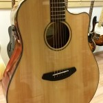 Breedlove acoustic electric guitar with cut away DCD21CE on sale in Vancouver Canada at Basone