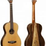 Tanglewood TWJP Parlour Acoustic Guitar with figured Spalted Mango Amara back on sale in Vancouver Canada at Basone