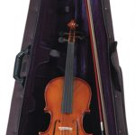Palatino VN-450 full size All Solid Violin Outfits on Sale in Vancouver Canada at Basone