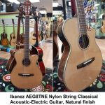 Ibanez Nylon String Classical Acoustic-Electric Guitar, Natural finish, model AEG8TNE-NT, for sale in Vancouver Canada at Basone