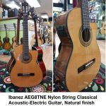 Ibanez Nylon String Classical Acoustic-Electric Guitar with cutaway, Amber finish, model GA6CE-AM, for sale in Vancouver Canada at Basone
