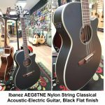 Ibanez Nylon String Classical Acoustic-Electric Guitar, natural finish, model AEG8TNE-BKF, Black Flat, finish, for sale in Vancouver Canada at Basone