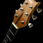 Cedar guitar headstock veneer, Clone model.