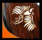 Custom Tele shaped electric, rosewood top on mahogany body, Maple Phoenix inlay on body