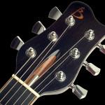 Custom headstock, Mahogany with Ebony veneer, Maple logo inlay