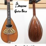 Bowlback Mandolin by Oscar Schmidt, 12-string (3 strings per course), circa 1915. for sale in Vancouver Canada at Basone